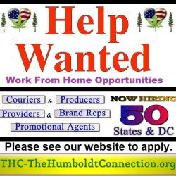THC Help Wanted